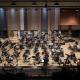 Rite of Peace - Concerto pour violoncelle d'Olivier Calmel